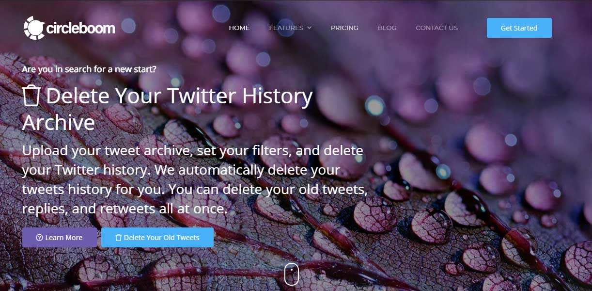 Delete Twitter Likes with Circleboom